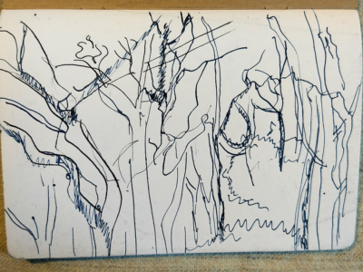 Fife-LimekilnsTrees